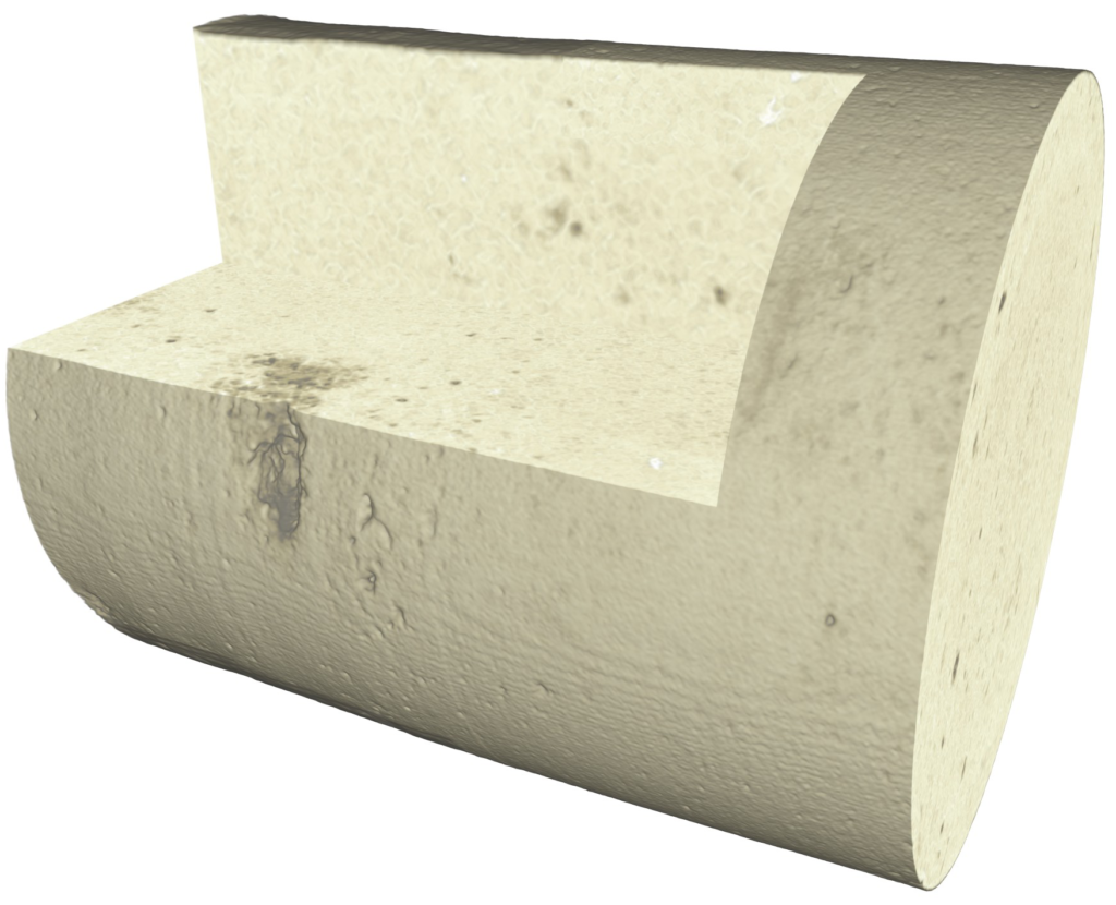 3D reconstruction of section of dolomite whole core at 80 micron resolution