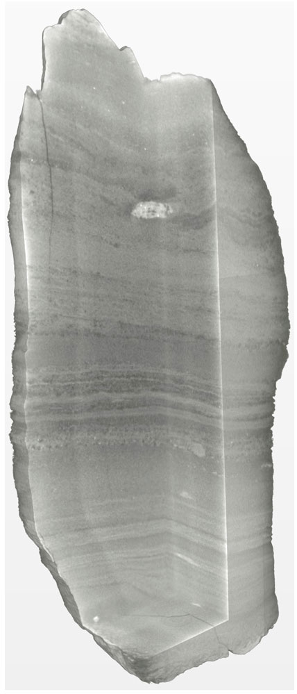 3D reconstruction of hand specimen at 28 micron resolution. Sample courtesy of the National Geological Repository, British Geological Survey